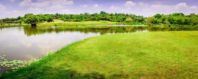 Schöne Felder, nahe Rangun, Myanmar Stockbild