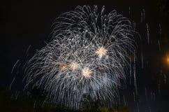 Schöne Feuerwerke Stockfotografie