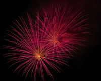 Schöne Feuerwerke nachts Lizenzfreie Stockfotografie