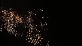 Schöne Feuerwerksblumen auf dem nächtlichen Himmel Hell färben blaue Feuerwerke auf dunklem Schwarzem Hintergrund Feiertag entspa stock video footage