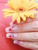 Schöne Finger halten gelbe Blume an Stockfotografie