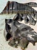schöne Formularseesteine im Strand Stockfotografie