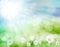 Schöne Frühlingslandschaft lizenzfreie abbildung