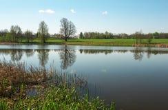 Schöne Frühlingslandschaft mit Fluss, Bäumen und blauem Himmel Lizenzfreie Stockfotos
