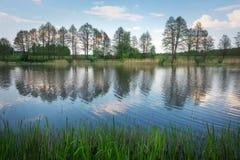 Schöne Frühlingslandschaft mit Fluss, Bäumen und blauem Himmel Stockfoto