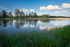 Schöne Frühlingslandschaft mit Fluss, Bäumen und blauem Himmel Stockbilder