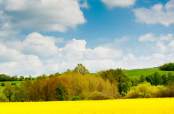 Schöne Frühlingslandschaft, Tschechische Republik Stockfotografie