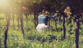 Schöne Frau in der Jacke im Weinberg Lizenzfreies Stockbild