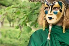 Schöne Frau in der Karnevalsschablone stockbilder