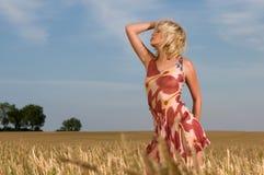 Schöne Frau, die auf dem Weizengebiet steht Lizenzfreie Stockbilder