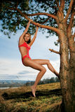 Schöne Frau im Baum lizenzfreies stockbild
