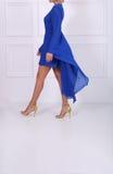 Schöne Frau im blauen Kleid Lizenzfreies Stockbild