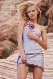 Schöne Frau im Kleid Stockbild