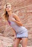 Schöne Frau im Kleid Stockbilder