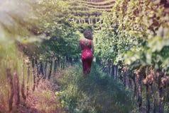 Schöne Frau im Kleid im Weinberg Stockbilder