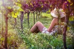 Schöne Frau im Kleid im Weinberg Stockbild