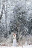Schöne Frau im Winterwald Lizenzfreie Stockbilder
