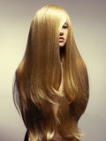 Schöne Frau mit dem ausgezeichneten Haar lizenzfreie stockfotografie