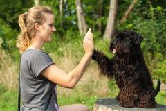Schöne Frau mit Hund Lizenzfreies Stockfoto