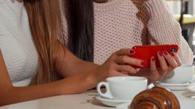 Schöne Freundinnen, die zusammen intelligentes Telefon an der Kaffeestube verwenden stock footage