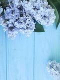 Schöne frische lila Dekoration auf einer hölzernen Hintergrundgrenze Lizenzfreie Stockfotos