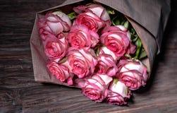 Schöne frische rosa Rosen stockbilder