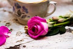 Schöne frische Rosarose, die mit den Blumenblättern liegt Stockfotos
