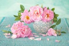 Schöne frische Rosen Stockfotografie