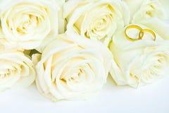 Schöne frische weiße Rosen mit Goldringen, Heiratskonzept stockbilder