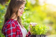 Schöne Gartenarbeit der jungen Frau Lizenzfreie Stockbilder