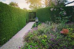 Schöne Gartenidee Stockfotografie