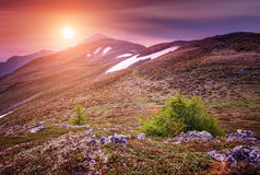Schöne Gebirgslandschaft mit purpurroter Farbe Stockfotos