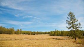 Schöne Gebirgslandschaft mit Wolken stock video