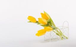 Schöne gelbe Tulpen in einem weißen Korb Stockfotografie
