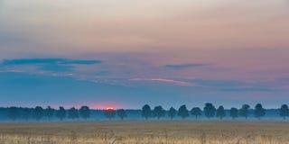 Schöne Getreideweidelandschaft fotografiert bei Sonnenaufgang Lizenzfreie Stockfotos