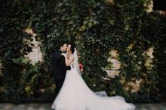 Schöne glückliche junge Braut, die hübschen Bräutigam in der sonnenbeschienen Gleichheit küsst Lizenzfreie Stockbilder