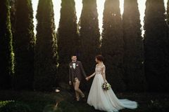 Schöne glückliche junge Braut, die hübschen Bräutigam in der sonnenbeschienen Gleichheit küsst Lizenzfreie Stockfotos