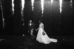 Schöne glückliche junge Braut, die hübschen Bräutigam in der sonnenbeschienen Gleichheit küsst Lizenzfreies Stockbild