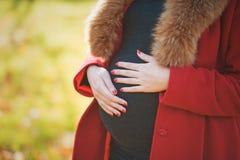 Schöne glückliche schwangere Frau, die im Herbstpark berührt ihren Bauch und genießt die Erwartung des Babys bleibt Stockfoto