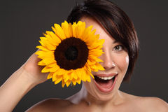 Schöne glückliche Sonnenblume des jungen Mädchens zu ihrem Gesicht Lizenzfreies Stockfoto