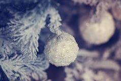 Schöne Glaskugel auf dem Weihnachtsbaum Stockbilder