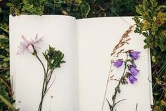 Schöne Glockenblume und Wildflowers auf Papiernotizbuch auf bluebe Stockfoto