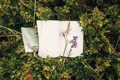 Schöne Glockenblume und Wildflowers auf Papiernotizbuch auf bluebe Lizenzfreies Stockfoto