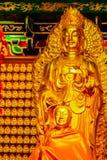 Schöne goldene Buddha-Statue im chinesischen Tempel Thailand Stockfotos