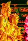 Schöne goldene Buddha-Statue im chinesischen Tempel Thailand Stockfoto