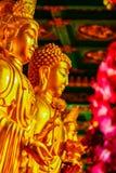 Schöne goldene Buddha-Statue im chinesischen Tempel Thailand Lizenzfreie Stockfotografie
