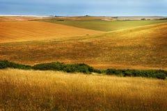 Schöne goldene Felder und Hügel Lizenzfreie Stockbilder