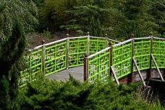 Schöne grüne Brücke Stockbild