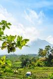 Schöne grüne Landschaft des Bergvulkans Agung auf Bali-Insel lizenzfreie stockfotografie