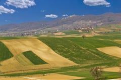 Schöne grüne Landschaft - Felder und Berg Stockbild